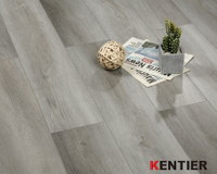 Fully Owned CBA Basketball Team /Kentier Flooring